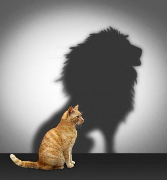 7 мифов, о которых нужно забыть, чтобы стать лидером