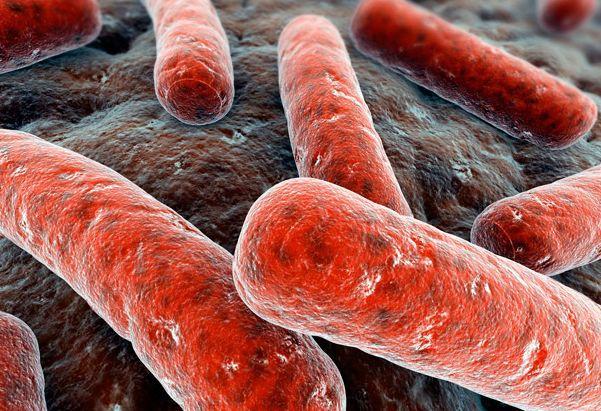 Туберкулез победят с помощью смартфона & наноаэрозоля?. туберкулез