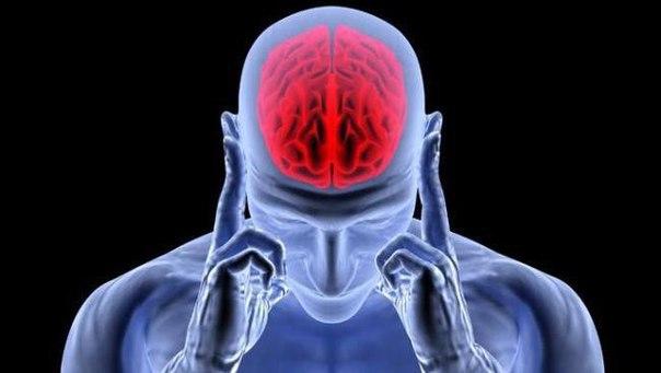 Как стресс портит наш мозг и что с этим делать