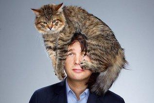 Почему кошка ложится на больное место человека?
